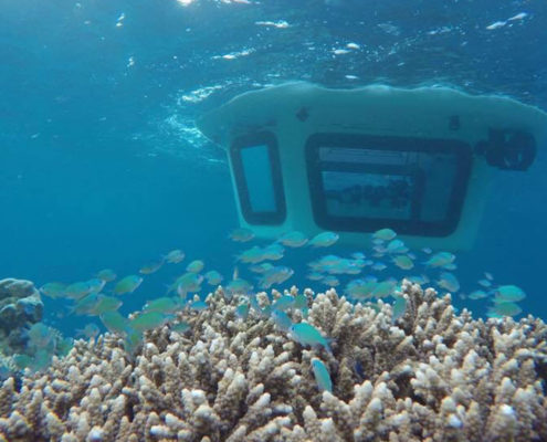 Hideaway Beach Maldives Excursions